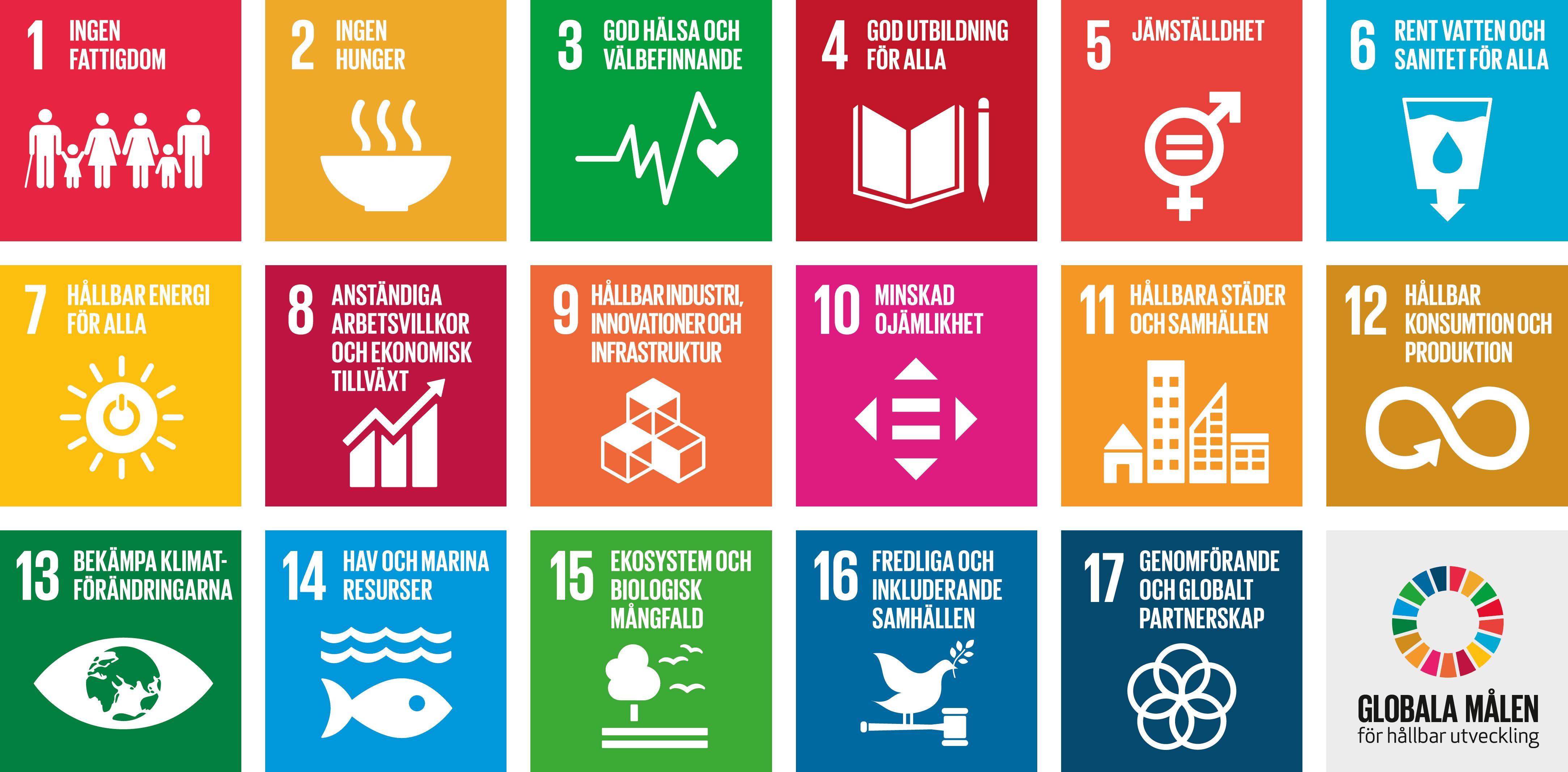 FN:s globala mål